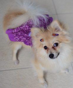 Lola usando Fivela Coração na cor roxa.