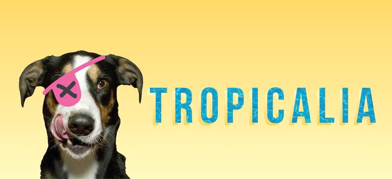 banner_tropicalia